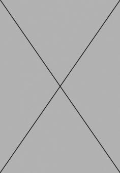 AGAPANTHUS inapertus   Portion(s)