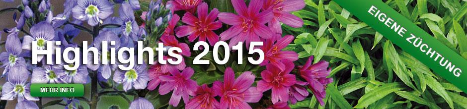 Slider Highlights 2015