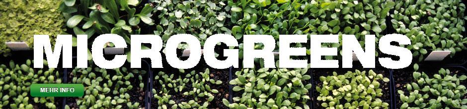 Slider Microgreens